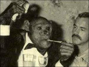猿のオリバー君